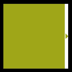 inlays-medallions